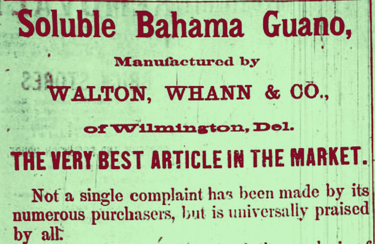 Guano once an Important Natural Resource in the Bahamas 1874
