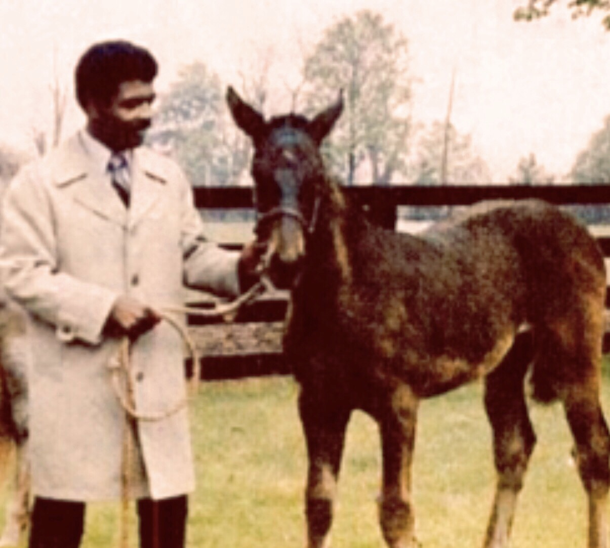 Dr. Archie Donaldson, First Ever Black Multimillionaire Thoroughbred Horse Owner   1978