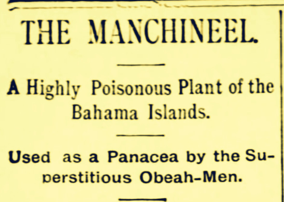 19th Century Propaganda: Most Poisonous Plant In The Bahamas Linked to Obeah 1888