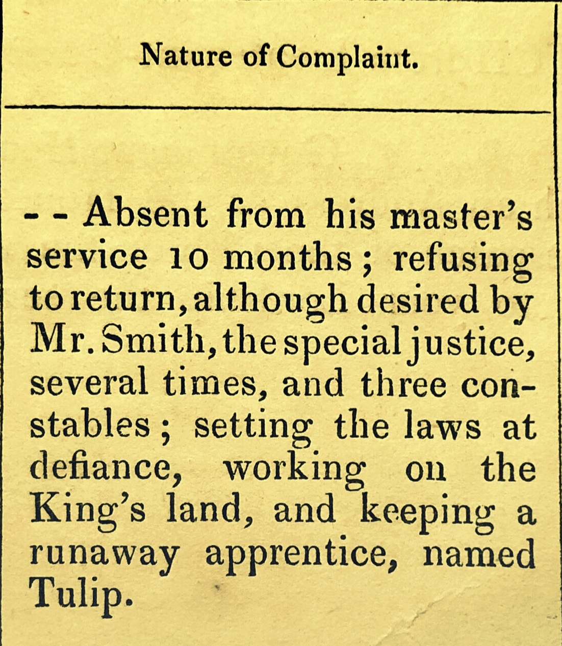 Former Slave Sam Charged With Hiding Runaway Apprentice Tulip, Disobeying His Master and Working the King's Land Without Permission, The Bluff, Eleuthera, 1835