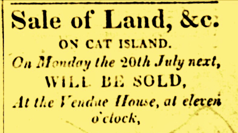 Freeman's Hall Plantation, Cat Island and 15 Slaves For Sale in 1812; For Sale Today Minus the Slaves and Sheep